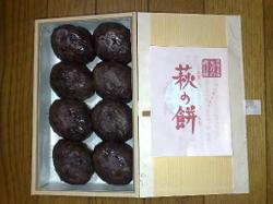 Tsuitachimochi2